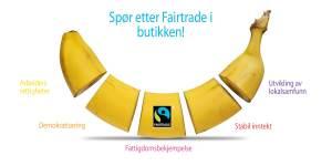 banan_banner